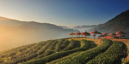 泰國清邁湄林