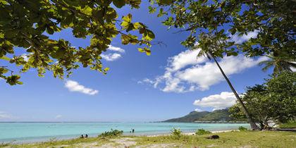 Temae, Moorea, French Polynesia
