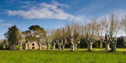 Htels pas chers Saint-Rmy-de-Provence - trivago