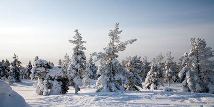 Levi, Kittila, Finland