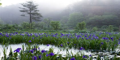 Kitahiroshima, Sapporo, Japan