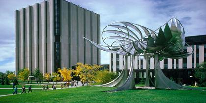 Montgomery - University of Calgary, Calgary, Alberta, Canada