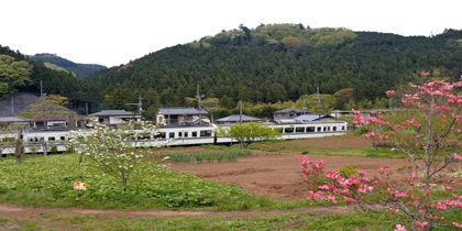 Hanno, Saitama, Japan