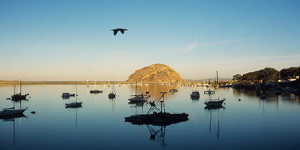 Morro Bay, San Luis Obispo, California, United States of America