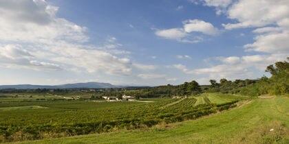 Zone viticole Valpolicella, Vérone, Italie