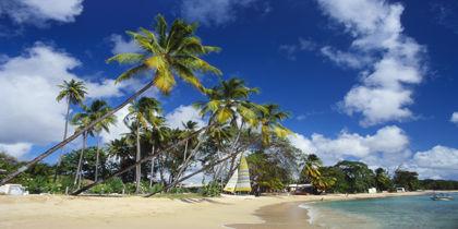 St. Peter, Barbados (all), Barbados