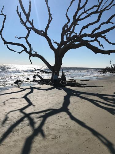 Villas By The Sea Jekyll Island Reviews