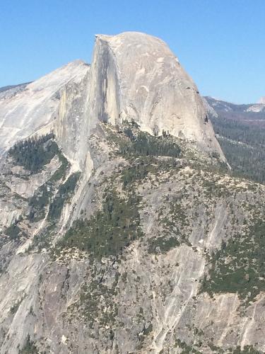 Book Comfort Inn Yosemite Area, Oakhurst, California ... | 375 x 500 jpeg 44kB