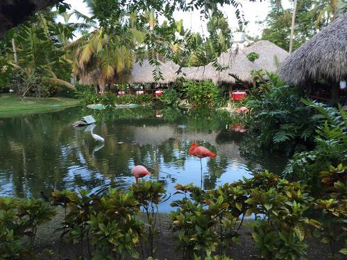 Natura Park Beach Eco Resort And Spa Ai